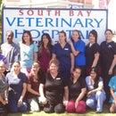 South Bay Veterinary Hospital