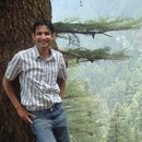 Ankur Tripathi