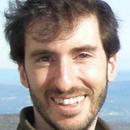 Matt Dominianni