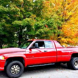 ! Thee Red Ram ™  😎