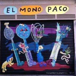 Mono Paco
