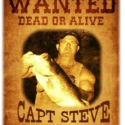 Steve Cordner