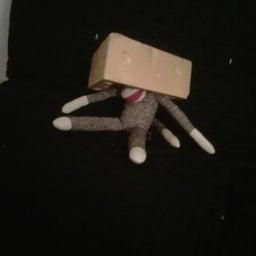 CheeseheadSockmonkey