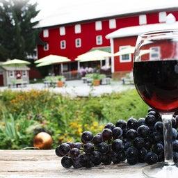 Adams County Winery