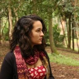 Carol Lustosa