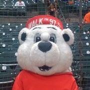 Walkie Bear WALK 97.5fm